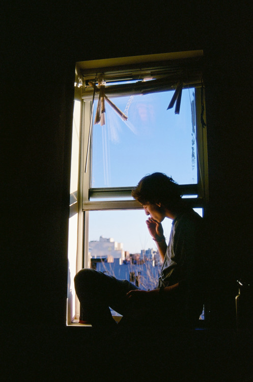 Mika by the window LAFAYETTE AVE, BROOKLYN NEW YORK