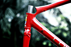 titsandtires:  Colossi 5 Road (by Colossi Cycling)