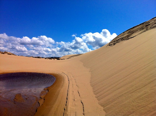 Crossing trackless sand dunes near Florence, Oregon.  Photo: Werner Brandt