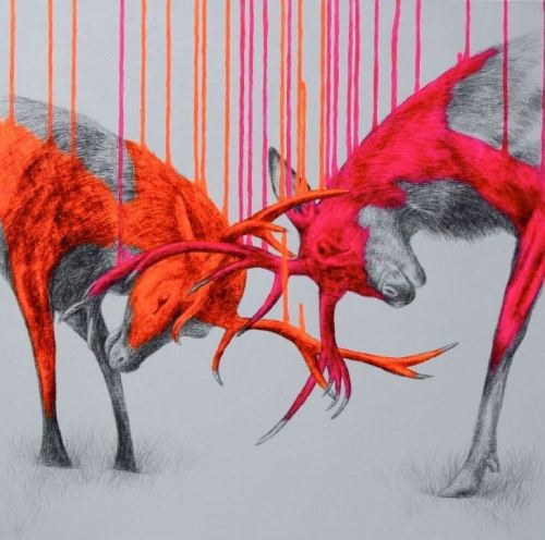 fer1972:  Louise McNaught