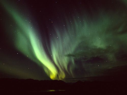 Aurora Borealis over Fish Lake, YukonShot on Provia 400X with a Pentax 645NII Photographer: Anthony DeLorenzo