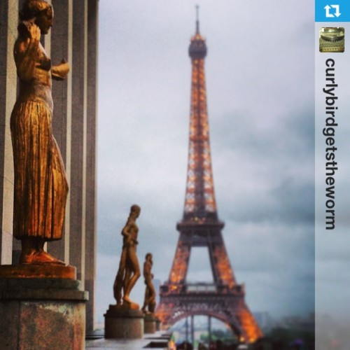 Amazing #Paris from @curlybirdgetstheworm #travel #triptrotting #france