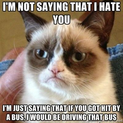 iseeallsides:  Oh grump cat, you make my day.