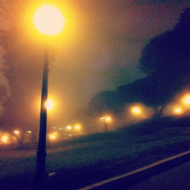 This nighttime #fog is super trippy. #ucla