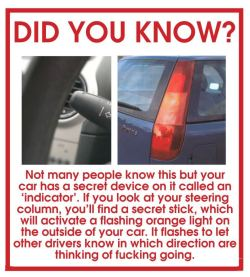 thisiszakia:  One of the reasons I have road rage.  Also the last sentence, there's the word 'you' missing.  so fucking relatable….