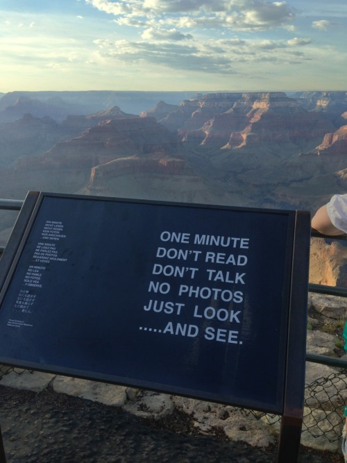 thenleavethemhairy:  Seriously. Not just in terms of the Grand Canyon but in terms of the small every day things too. I hate it when I see something really pretty outside or I come along a nice little spot and the first thing whoever I'm with does is take a picture and post it so that everyone following them can know just how much of a life they have. Its like why not just keep that moment private and enjoy it while you're there?
