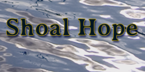 "The Studio Visit, Shoal HopeAn excerpt from my novel, Shoal Hope: ""… I'm sorry to be barging in…"" ""Well, since you're here.…View Post"
