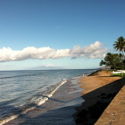 Beautiful morning at the cove #Kihei #SUP (at The Cove)