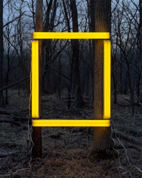 love, photography, nature, neon, yellow, art, cold and warm…. http://open.spotify.com/track/4uE2aTNrczGv6qHIbFLYVG