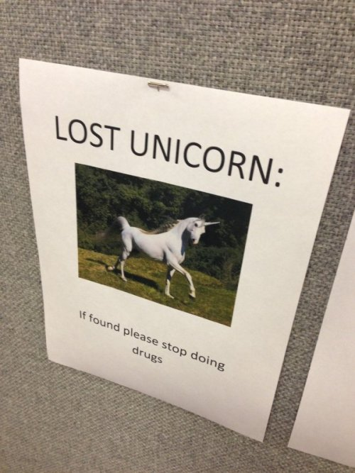 collegehumor:  Lost Unicorn But if you for real find it, that'd be great.  friend found it, but the he started with the drugs.  Unicorn - 1 / Friend - 0