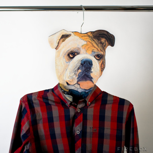 Animal Head Hangers make the latest meme real in your closet