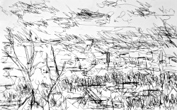 Hungarian Landscape pen on paper