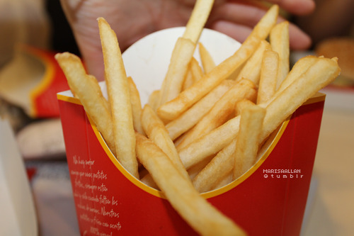 h0lllister:  mcdonalds fries >