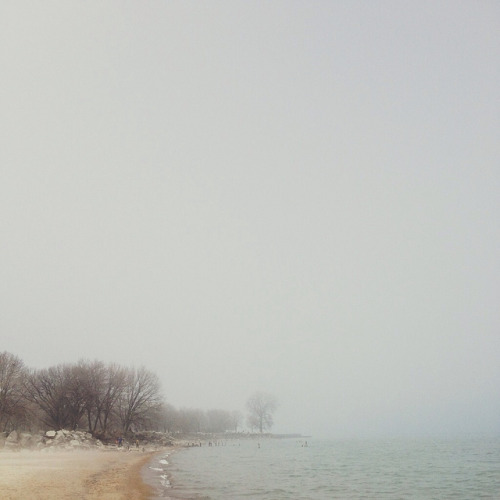 Foggy beach on Flickr.