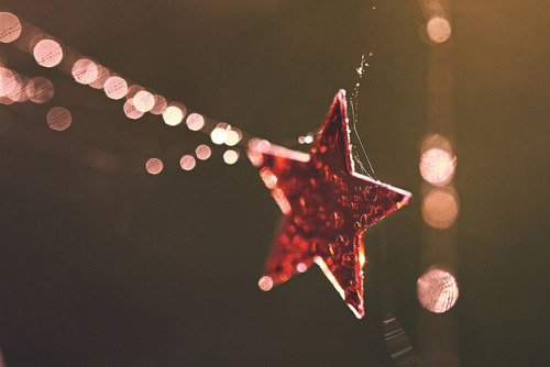 STAR-STRUCK BOKEH by Neal. on Flickr.