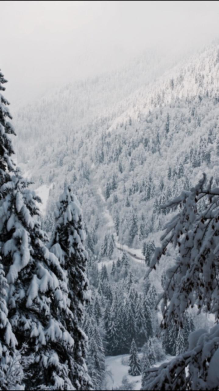 Beautiful Wallpaper Home Screen Snow - tumblr_oigdca0HHI1s82ciko6_1280  You Should Have_726725.png
