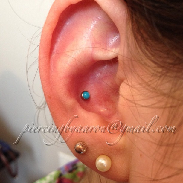 Turquoise conch with jewelry from @industrialstrength  #conch#industrialstrength#piercing #safepiercing #ear