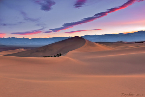 neptunesbounty:  Lights Last Kiss, Mesquite Dunes, Death Valley National Park by Jared Ropelato on Flickr.