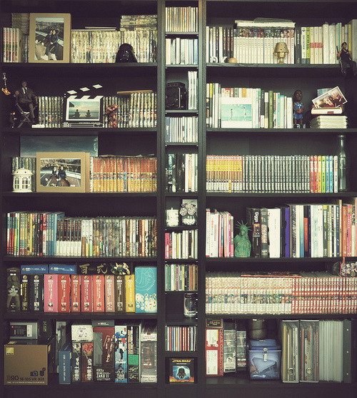 bookshelves:  Billy, Benno and Billy by duncluk  on Flickr.