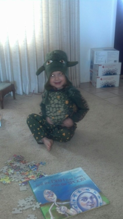 Yoda dragon baby is a puzzle fiend.