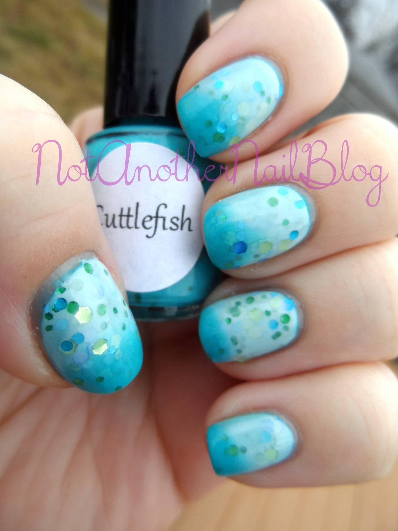 Two posts in one day? Whoo! Chels from Pretty & Polished (my absolute favorite indie polish) sent me a few bottles to try out, and Cuttlefish was one of them, which is so great, because I wanted to try this one as soon as I saw her promo pics of it. Cuttlefish is part of her color changing line of polishes, and when it's warm it turns white, but cold turns it a lovely teal. Now if you look closely, you'll notice it has glitter bits in it! Large gold hex, small green round and hex glitters along with medium blue hex and round glitters. Now be aware that because of the color changing pigment that these are thicker than usual, so a bit of thinner and you'll be right as rain. With that in mind, the application on this was a bit tricky, I did dab a bit to get the glitters where I wanted them, but as soon as I added a bit of thinner everything worked much better. Also, the other thing I thought was neat, was that no matter how thick a topcoat, it'll still change colors, and boy will it change colors. Here is a picture of the polish right after a dunk in cold water:  I wanted to show everyone how fast the color change was, so I made a quick video; never mind that I didn't say a word in it- I have no idea what to say on camera. ^___^   Like Pretty & Polished here and buy them here   Disclosure- Products were provided to me by the manufacturer for my opinion and honest review. See here for more information.
