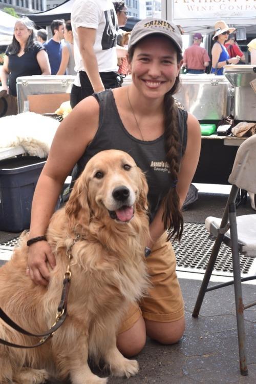 golden retriever dog farmers market Union Square Greenmarket NYC New York City