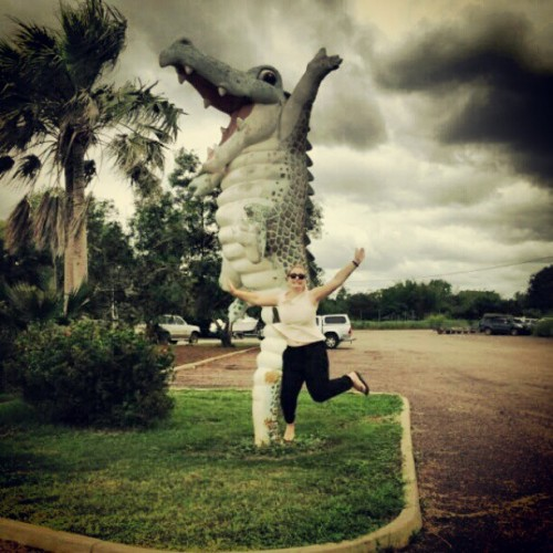 Crocodile jumping in Darwin!