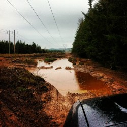 #muddin #off #road #fun #yehaw