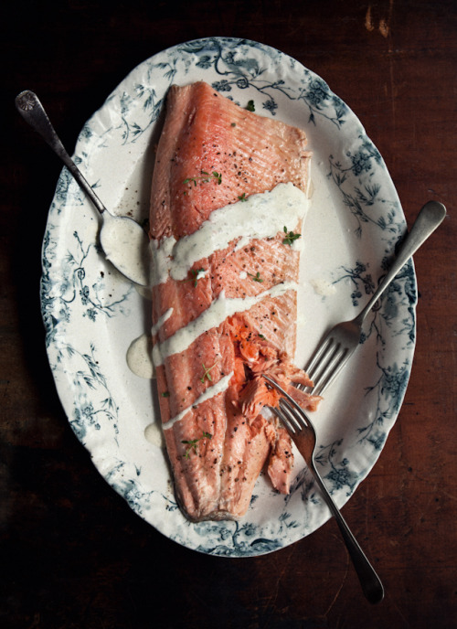 theblackworkshop:  Poached Ocean Trout with Tarragon, Lemon and Champagne Sauce