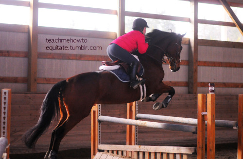 Taylor & Bella in their lesson today at Lochside Feb '13