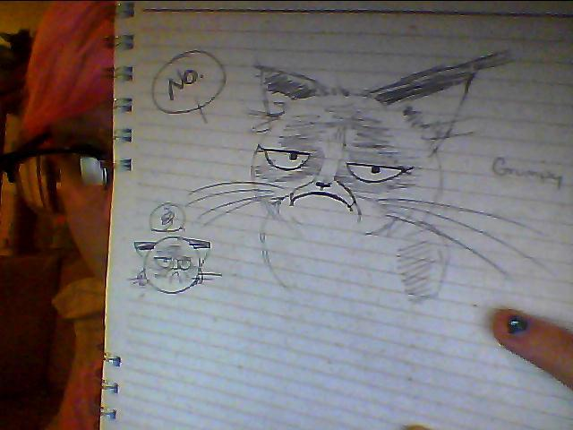 My friend asked me to draw him a meme so here's Grumpy Cat!