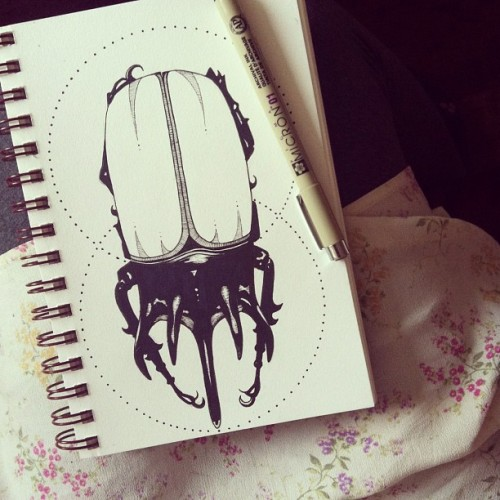 visceralpolkadots:  #art #myart #drawing #doodle #beetle #sketch #ink #illustration #bug