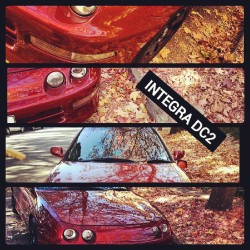 being  bored kunt in autumn lols. #autumn#leaves#red#orange#toranored#dc2#honda#integra#b18#vtec#nofilter#editedborder#usdm#jdm#needsmorelow#needsaconversionfacelift#fuark#bored#morning#sydney#australia#westside#instadaily#instagood#fcuktags#lol#car#carporn#import#japan#vtec
