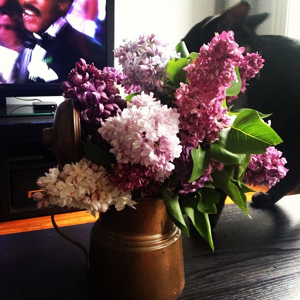 Farmers market spoils. #lilac  (at Home)