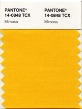 """Pantone, an X-Rite company (NASDAQ: XRIT), and the global authority on color and provider of professional color standards for the design industries, today announced PANTONE® 14-0848 Mimosa, a warm, engaging yellow, as the color of the year for 2009. In a time of economic uncertainty and political change, optimism is paramount and no other color expresses hope and reassurance more than yellow."""