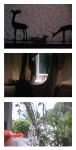 Another example of D60 turned to pinhole, 3 of my favourites. Entire set online here: http://www.flickr.com/photos/91173844@N00/sets/72157619510649015/