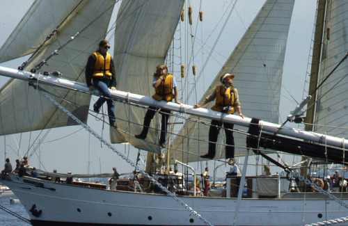 Tall Ships crew members, 1980 May 30.  Peter H. Dreyer slide collection, Collection #9800.007, City of Boston Archives.  This work is free of known copyright restrictions.  Please attribute to City of Boston Archives and credit Peter Dreyer.. For more images from this collection, click here