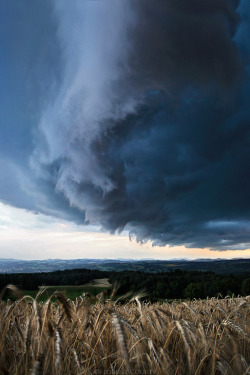 0mnis-e:  Under the shelf cloud By Florentcourty