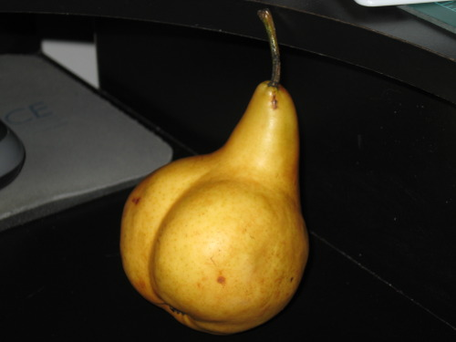 fristjra:  iamaleximusprime:  Dat pear flank!  XD  Alex, it's you!