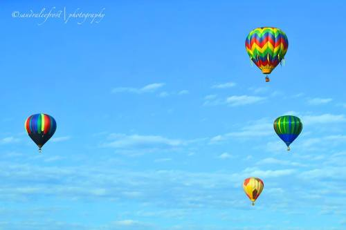 Community images and videos from the Great Reno Balloon Race 2014 shared via #renolens. http://aroundthearch.com/blog/2014/09/08/community-images-and-videos-from-the-great-reno-balloon-race-2014/