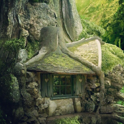 #beautiful #house #tree #Treehouse #LOTR #Lord #of #the #rings #hobbit #frodo #cool #nice #gorgeous #room #fun #amazing #magical #mystical #wizard #love