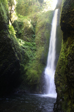 quiet-nymph:  Oneonta Gorge, Oregon