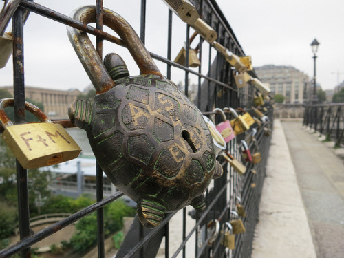 avocadosandcardigans:  Pont Neuf 1 on Flickr.