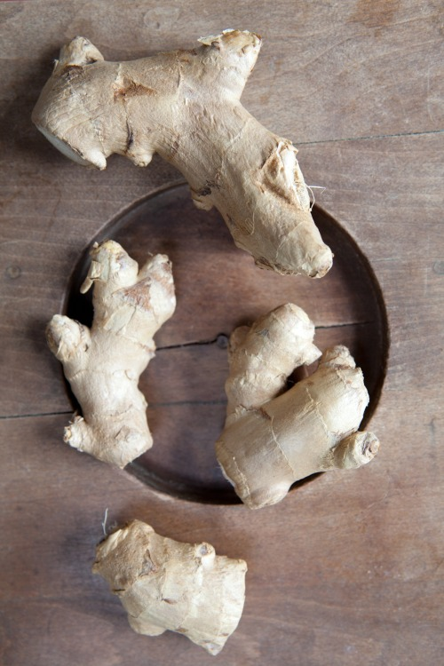 Ginger Root, February 2012