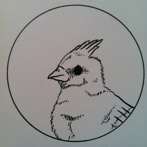 Put a bird on it. #image #bird #draw