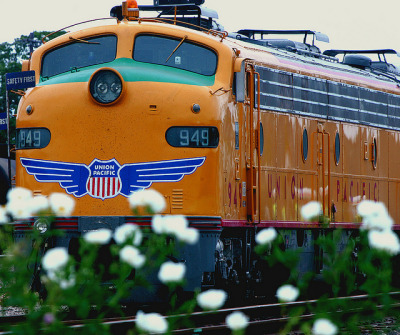 worldwiderails:  Flower Power by braniffelectra on Flickr.
