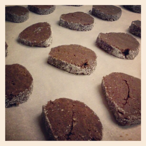 [Image: A tray of chocolate-pepper cookies ready to go into the oven.] We had a cookie-baking party last night. It warmed my soul and allowed me to forget, for a few hours, that I hate the world and most of the people in it.
