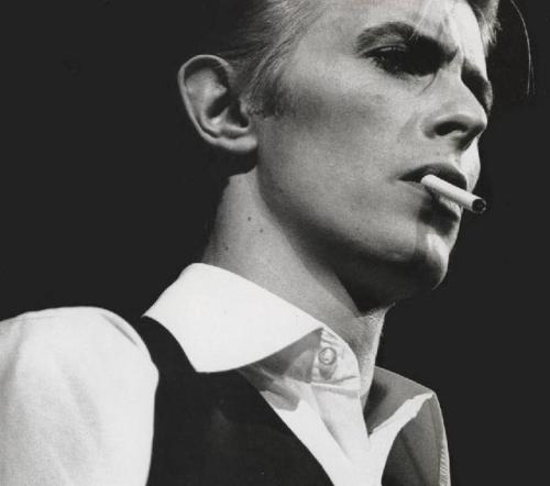 David Robert Jones, a.k.a. David Bowie Asc: AquariusSun: Capricorn, 12th houseMoon: Leo, 6th houseMercury: Capricorn, 11th houseVenus: Sagittarius, 9th houseMars: Capricorn, 12th house 8th house Eros and Chiron conjunct in Scorpio7th house Psyche and Vertex (rx) conjunct in VirgoSun conjunct MarsMoon conjunct 7th house Saturn in LeoVenus conjunct Midheaven in SagittariusSaturn conjunct 7th house Pluto LeoMoon, Saturn, and Pluto opposite AscendantSun, Mercury, and Mars square 8th house Neptune in Libra1st house Ceres in Aquarius4th house North Node (rx) in Gemini trine Ascendant