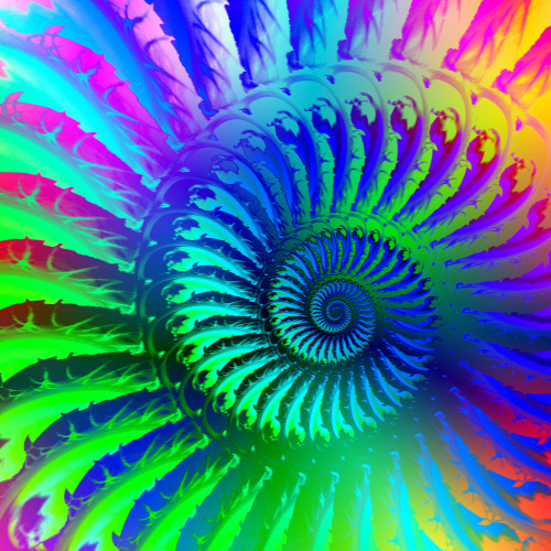 centershock:  psychedelic fractal (by Photography By Pixie)