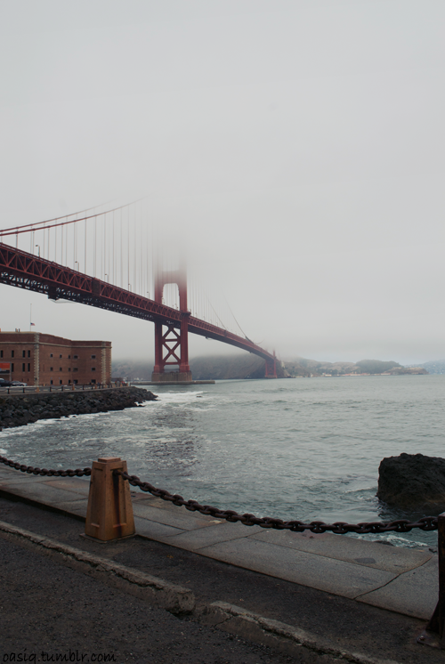 oasiq:  golden gate.